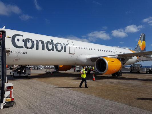 Unsere Condor A 321 auf dem Flughafen Lanzarote nach der Landung