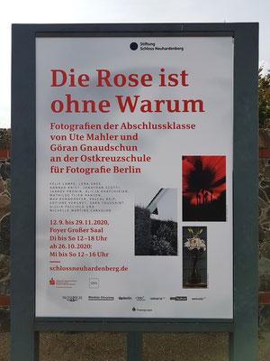 """Plakat für die Fotoausstellung """"Die Rose ist ohne Warum"""""""