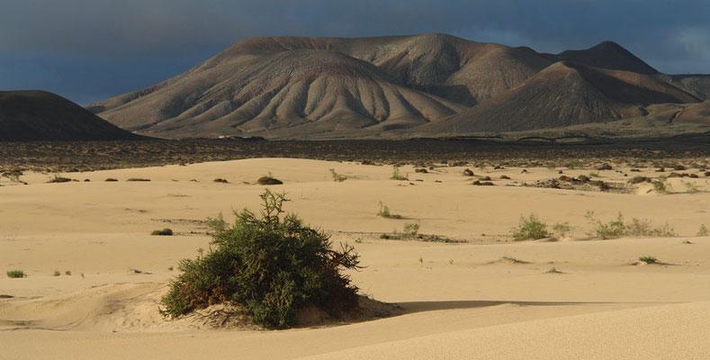 Parque Natural de Corralejo, Blick nach SW zur Montaña Atalaya de Huriamen