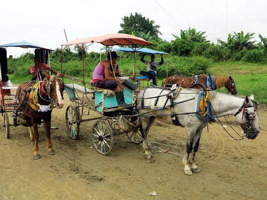 Pferdekarren für den Zubringerverkehr zu den Dörfern