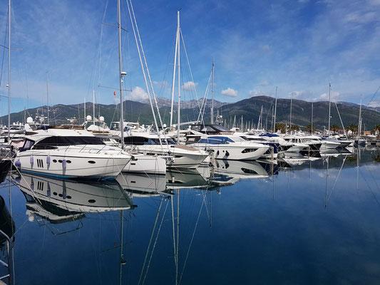 Yachten im neuen Yachthafen Porto Montenegro