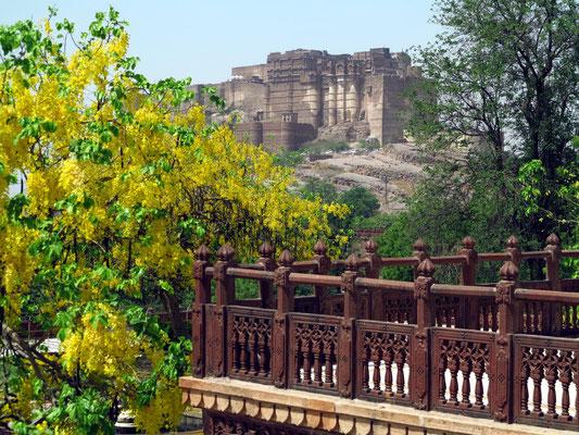 Blick vom Jaswant Thada zum Mehrangarh Fort
