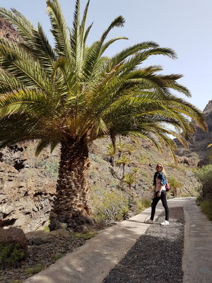 Weg zum Tropischen Fruchtgarten im Barranco