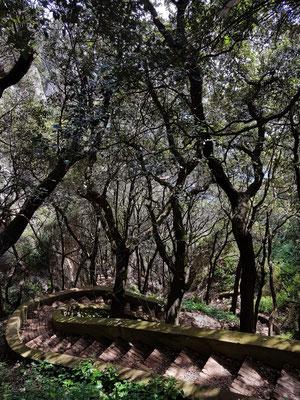 Wanderweg vom Arco Naturale zum Belvedere Tragara