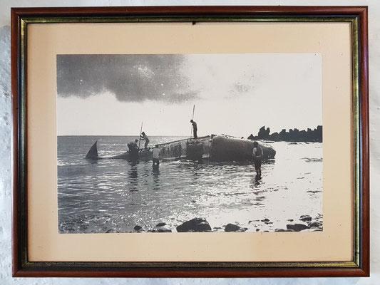 Walfang auf Terceira