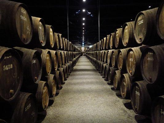Portweinkellerei Taylor's. Hier reifen die Portweine in Eichenfässern und entfalten zunehmend Fülle und Komplexität.