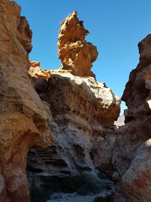 Im Labyrinth der ockerfarbenen Felsen