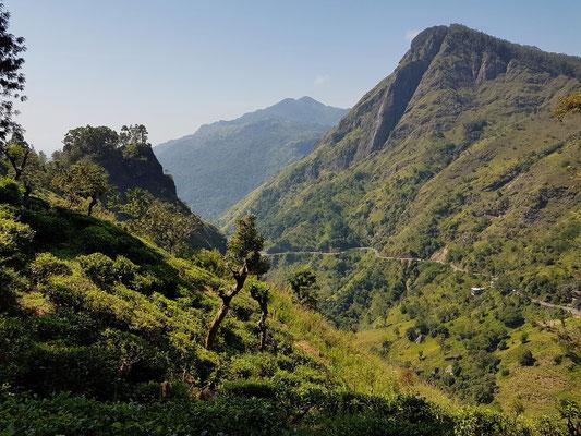Auf dem Wanderweg zum Little Adam's Peak, Blick auf Ella Rock