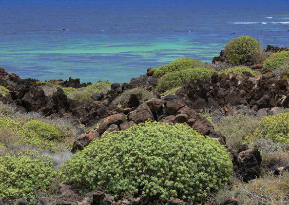 Punta del Palo, Küstenlandschaft südöstlich von Orzola