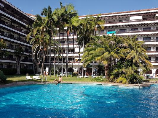 Apartmenthaus Coral Teide Mar, Swimmingpool und Palmengarten