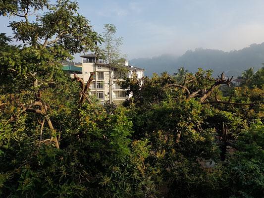 Ausblick aus meinem Zimmer im Kandy Lake Heaven