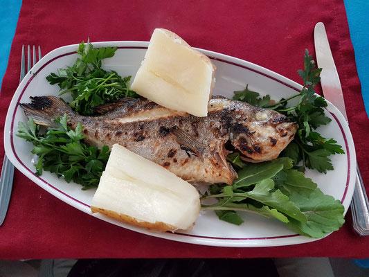 Zum heutigen Besuch des Heiligen Andreas gehört eine Fischmahlzeit, hier eine Dorade in einem vorzüglichen Fischlokal.