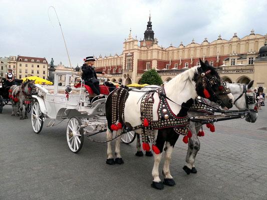 Hauptmarkt von Krakau, im Hintergrund die Tuchhallen