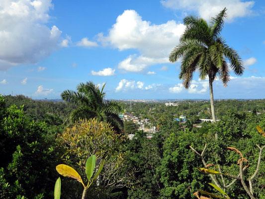 Blick von der Finca Vigía nach Havanna