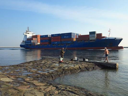 Container-Schiff EXPERT, Länge 141 m, Breite 26 m, DWT 9387, Baujahr 2011