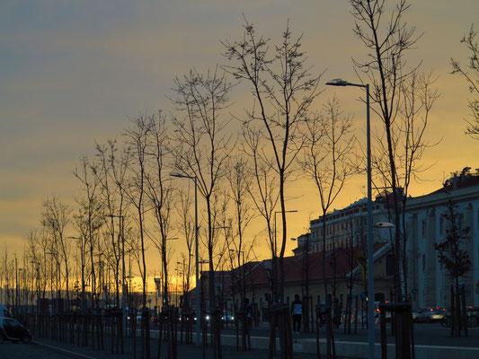 Sonnenuntergang an der Avenida Infante Dom Henrique