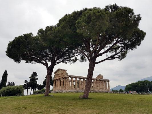 Paestum. Tempel der Athena