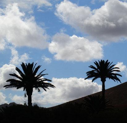 Landschaft um Betancuria
