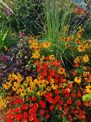 Dekoratives Pflanzbeet aus Anlass der BuGa 2021