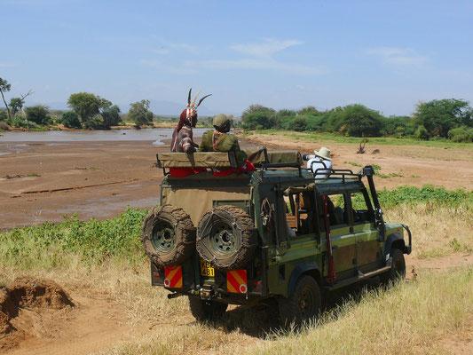 Pirschfahrt mit einheimischen Rangern