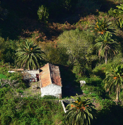 Bauernhaus bei El Cedro