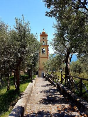Chiesa San Pancrazio Martire im Olivenhain
