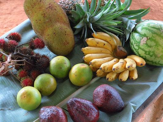 Früchte in der Gewürzfarm von Kizimbani
