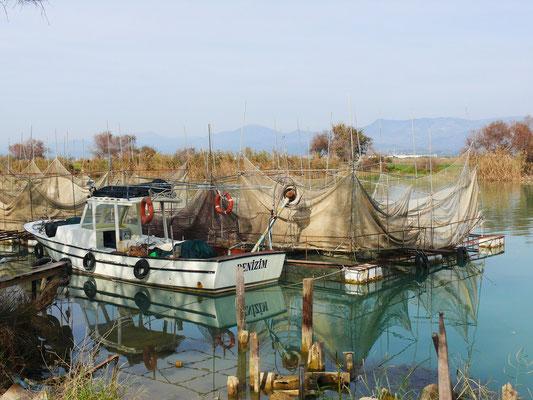 Fischkulturen am Manavgat