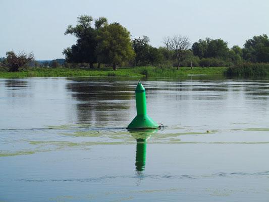 Die Oder mit Fahrwasserzeichen (Steuerbordtonne)