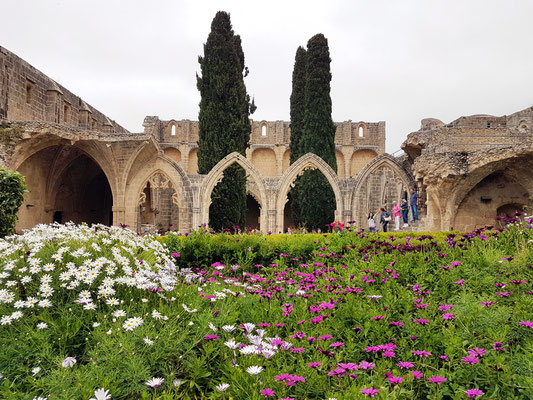 Klosterruine Bellapais