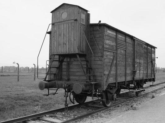 """Güterwaggon an der """"Rampe"""""""