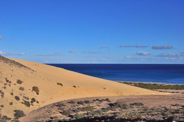 Große Düne an der Playa de Sotavento