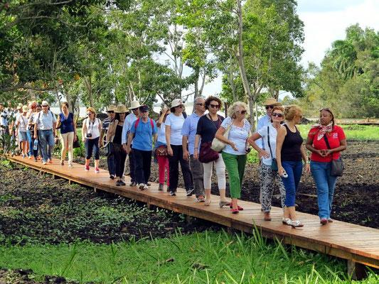 Gruppenreisen in Kuba
