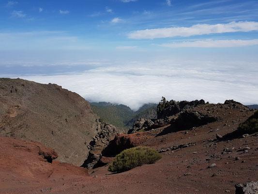 Blick von der Straße zum Roque de los Muchachos nach Nordosten auf das Wolkenmeer über dem Nordteil von La Palma