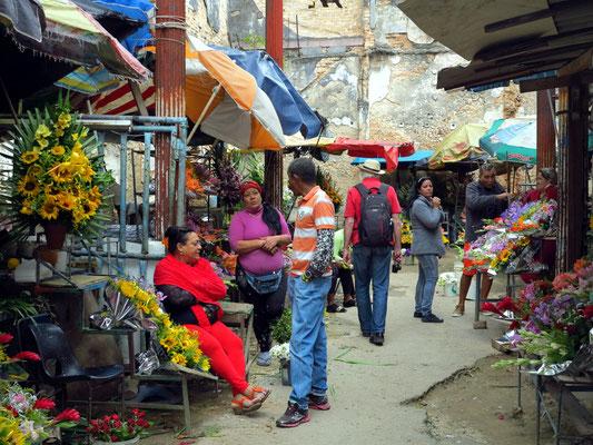 Blumenmarkt in Habana Vieja
