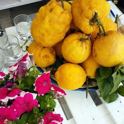 Limonen auf Procida