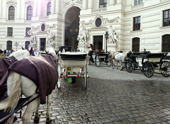 Fiaker vor der Hofburg