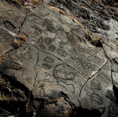 Los Letreros , rätselhafte Schriftzeichen auf flachen Lavaplatten