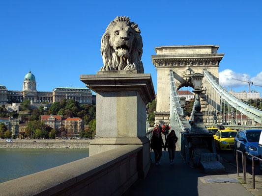 Löwenstatue am Brückenkopf, Burgpalast auf dem Burgberg