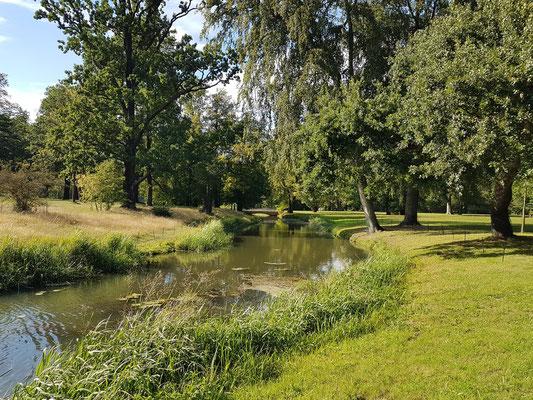 Hermannsneiße im englischen Schlossgarten