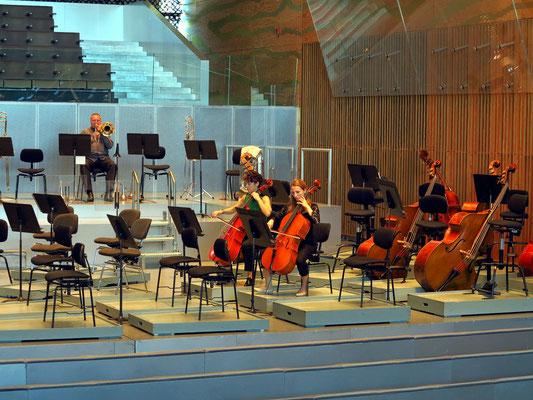 Casa da Música, Vor der Aufführung
