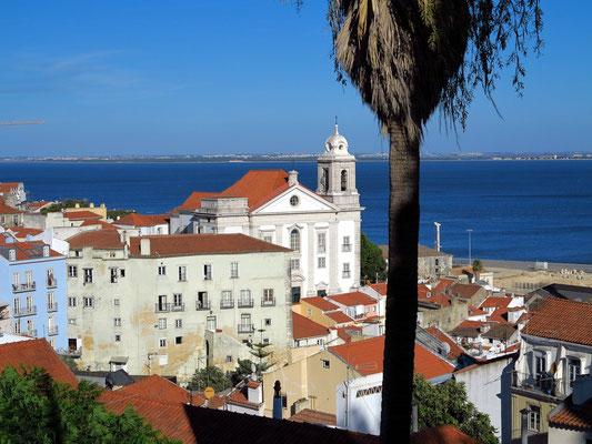 Stadtteil Alfama. Blick vom Miradouro de Santa Luzia nach Osten