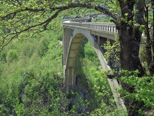 Đurđevića-Tara-Brücke
