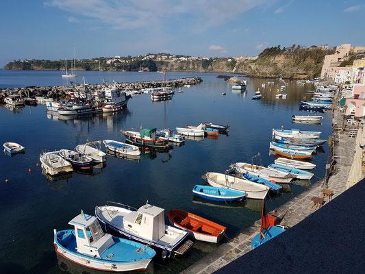 Procida, Marina di Corricella. Blick von unserer Terrasse auf den Fischerhafen