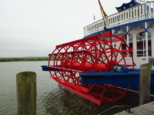 MS River-Star im Hafen von Zingst