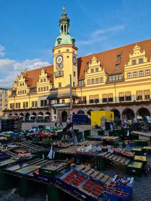 Marktstände am Freitag auf dem Markt von Leipzig, dahinter Stadtgeschichtliches Museum Leipzig  (Altes Rathaus)