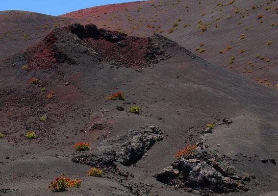 Pico Redondo
