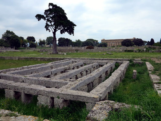 Paestum. Piscina