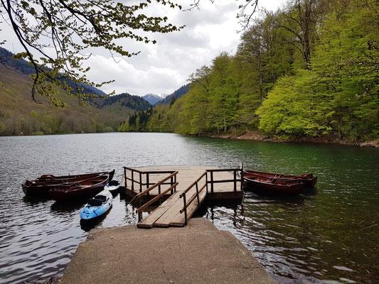 Biogradsko Jezero, Höhe über dem Meeresspiegel 1094 m, mittlere Tiefe 4,5 m