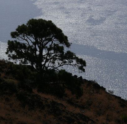 Mar de las Calmas